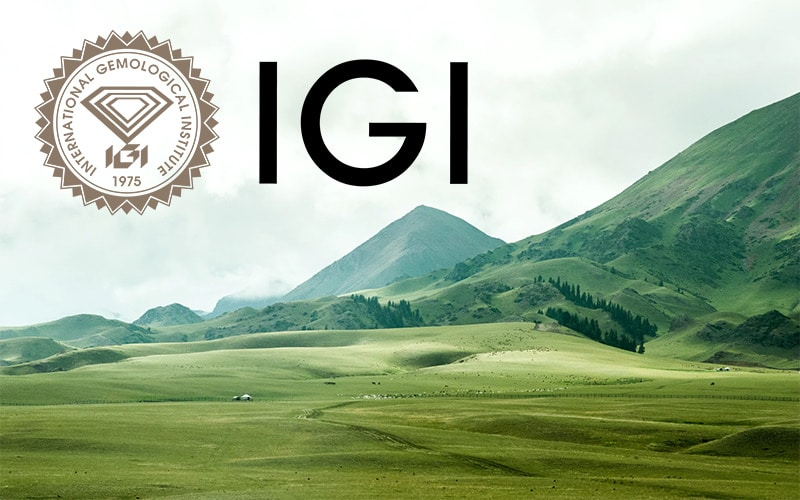 Read more about the article IGI becomes first Gem Lab to commit to Carbon Neutrality