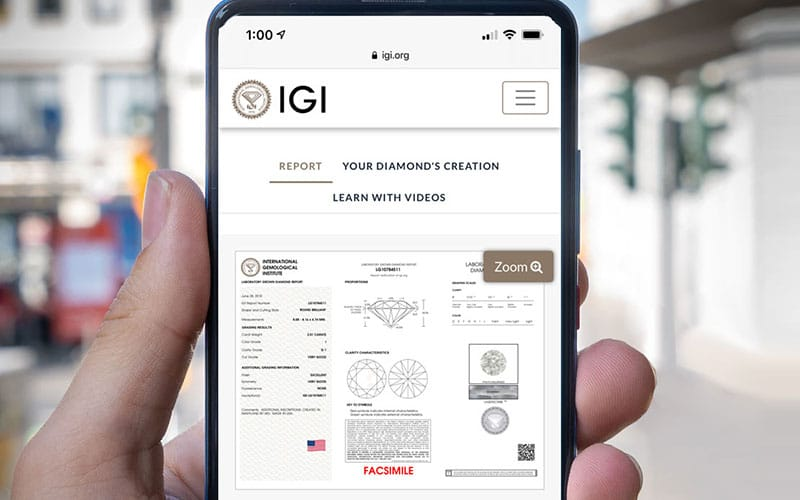 See IGI's new Digital Report Platform