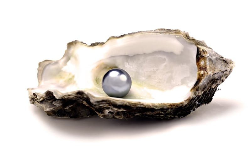 Read more about the article A little gossip about pearls